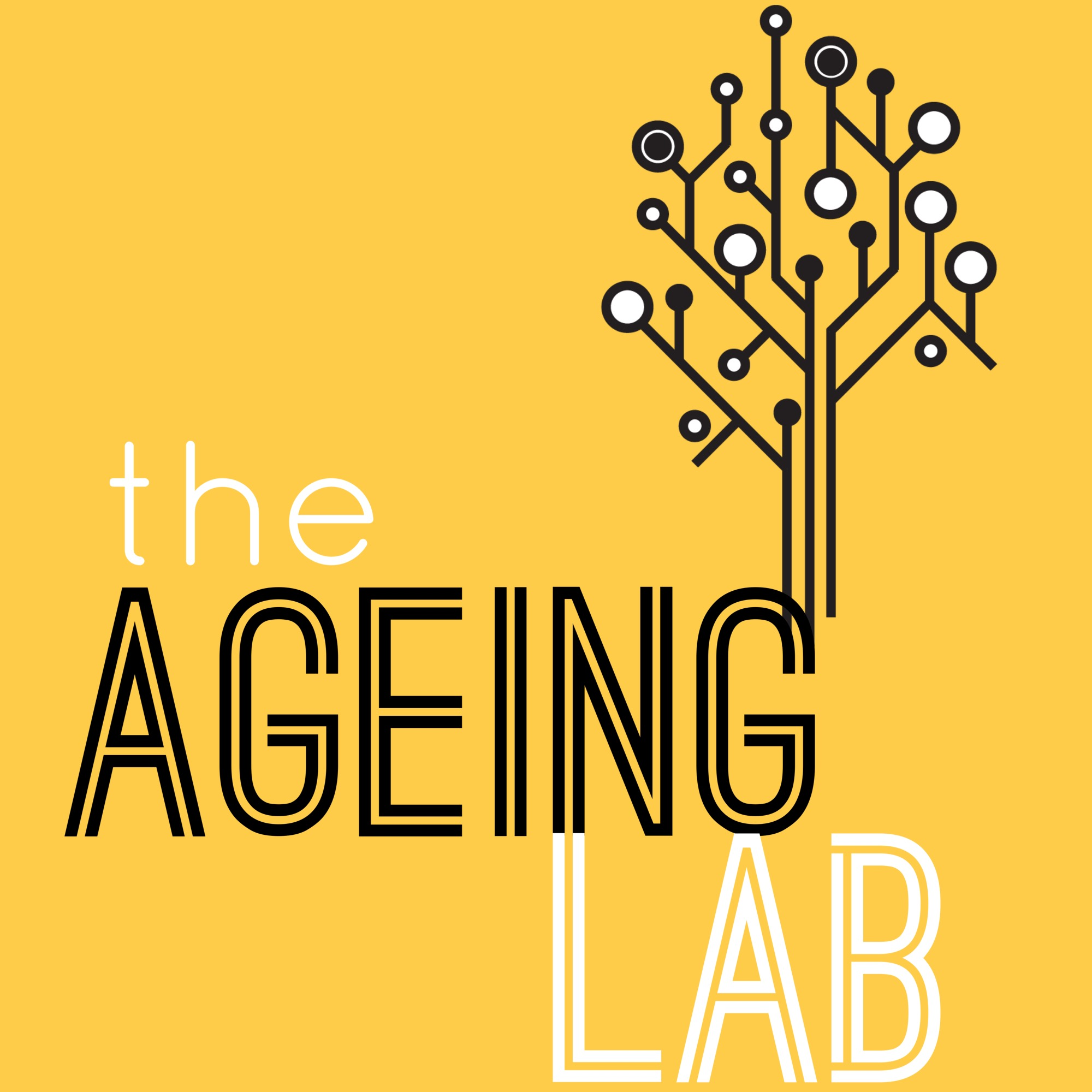 The Ageing Lab